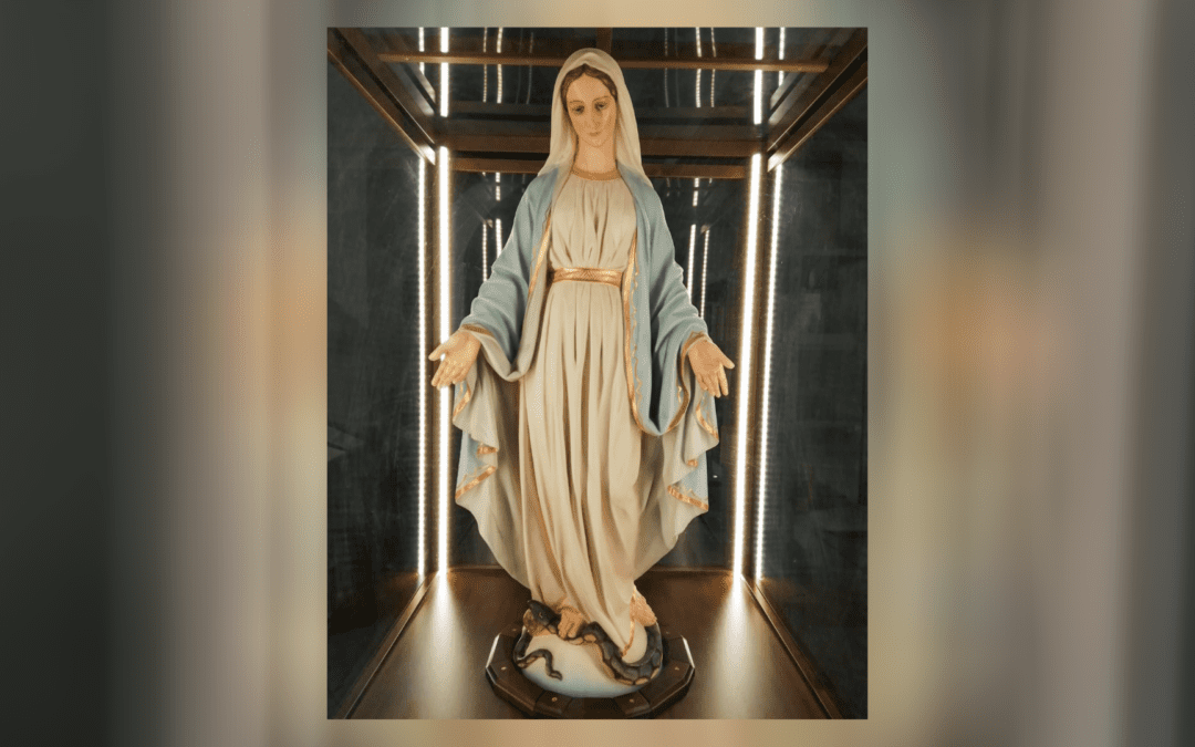 November 11: Pope Francis will bless the image of Our Lady of the Miraculous Medal that will go on pilgrimage in Italy