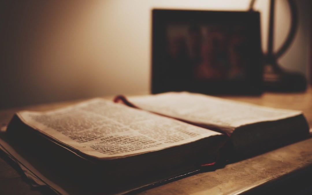 El Espíritu Misionero de la Congregación de la Misión
