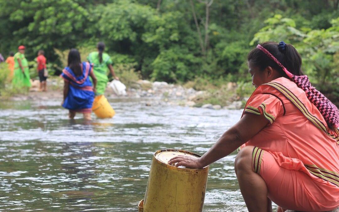 Equilibro en la Casa Común: Orientaciones post-pandemia desde el Buen Vivir indígena