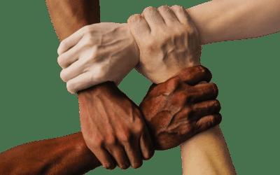 Síntesis del trabajo en los encuentros de hermanos