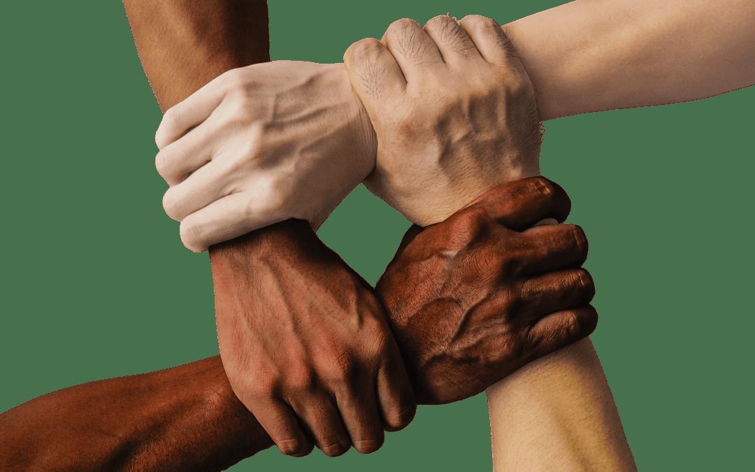 Synthèse des travaux des deux rencontres des frères