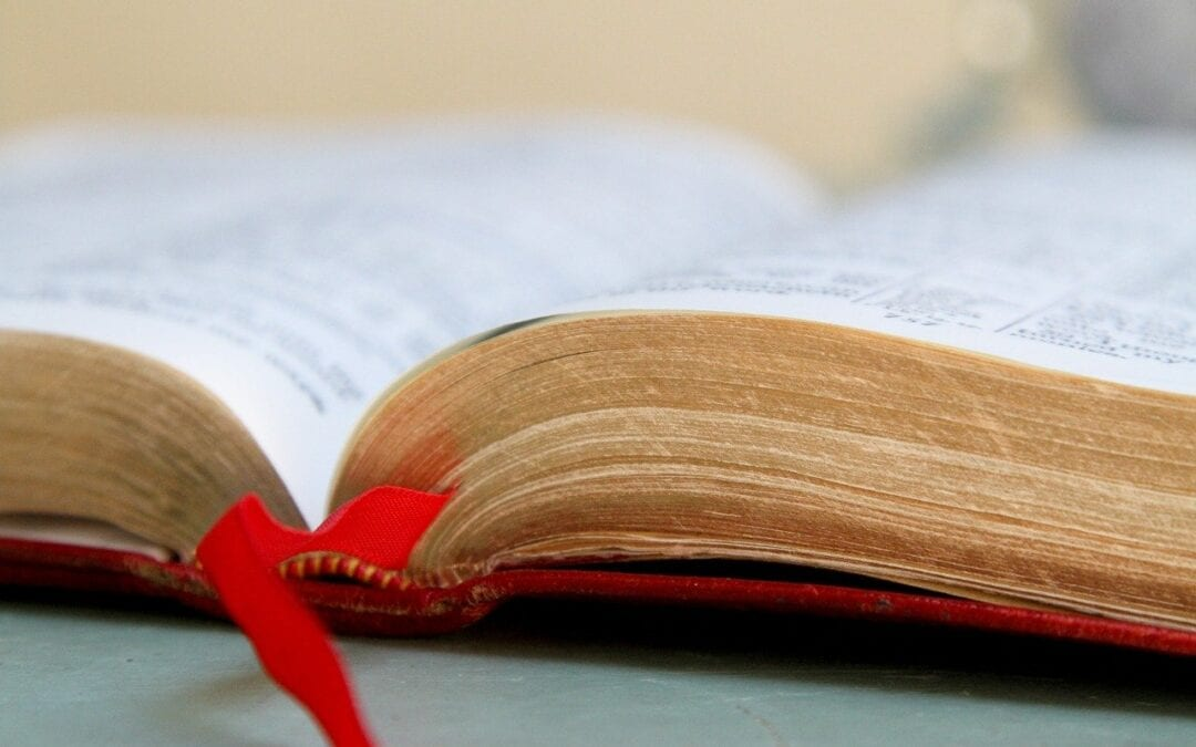 San Vincenzo e la Parola di Dio